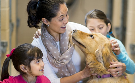 Wellness Veterinary Clinic – 976 American Drive | Neenah
